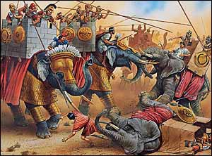 Indian war elephants of Antiochus III and African war elephants of Ptolemy IV in the Battle at Raphia, 217 BC.