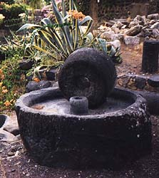 Millstone for producing olive oil in Capernaum.