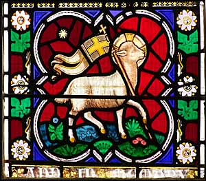 Lamb of God, stained glass St Andrew, Whittlesey, Cambridgeshire, England.